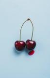 2 вишни, конец-вверх Стоковые Фото