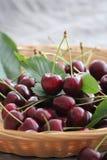 вишни корзины свежие стоковые фото
