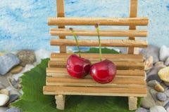 2 вишни на миниатюрном стенде Стоковые Фотографии RF