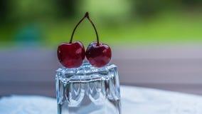 вишни одна белизна плиты сладостная Стоковые Изображения