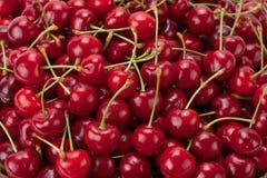 вишни предпосылки зрелые Стоковое Изображение RF