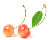 2 вишни при крупный план лист изолированный на белой предпосылке Стоковые Фото