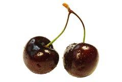 вишни свежие 2 стоковое изображение