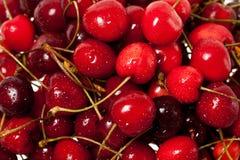 вишни сладостные стоковые изображения