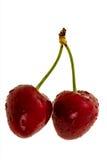 вишни сладостные Стоковые Фотографии RF
