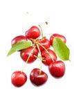 вишни сочные Стоковое Изображение RF