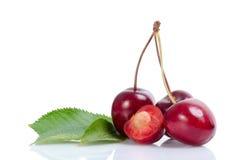 4 вишни с отражением Стоковые Изображения RF