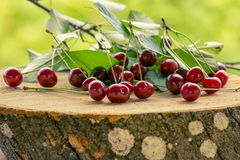 Вишни ягод лежа на пне Стоковая Фотография