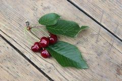 Вишни ягод на хворостине Стоковое Фото