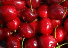 вишни Стоковые Изображения