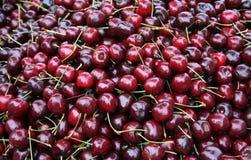 вишни Стоковые Изображения RF