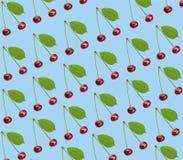 Вишня безшовной картины сладостная свежая при зеленые изолированные лист Стоковые Фото