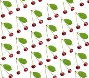 Вишня безшовной картины сладостная свежая при зеленые изолированные лист Стоковое Фото