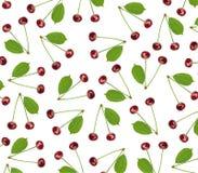 Вишня безшовной картины сладостная свежая при зеленые изолированные лист Стоковая Фотография RF