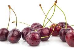 Вишня, вишневое дерево, красные зрелые вишни Стоковые Изображения RF