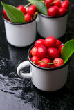 Вишня в чашке эмали на черной предпосылке Здоровый, плодоовощ лета Вишни Стоковое Фото