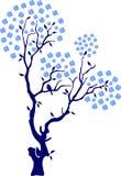 вишня птиц oriental Стоковая Фотография RF