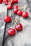 вишня свежая Стоковая Фотография RF