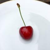 вишня свежая Стоковое Изображение RF