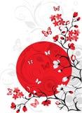 вишня цветения предпосылки Стоковые Изображения