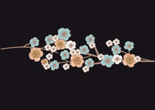 вишня цветения цветет вал Стоковое Фото