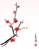вишня цветения иллюстрация штока