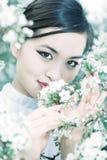 вишня цветет детеныши женщины портрета Стоковое Изображение