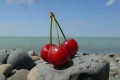 вишня Стоковая Фотография RF