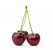 вишня Стоковое фото RF