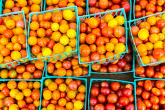 Вишня Tomatoss Стоковое фото RF