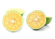Вид апельсина Стоковая Фотография