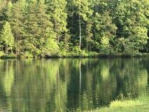 Вида на озеро зеленый цвет совсем Стоковое Фото