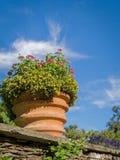 Вилла Таранто Италия ботанических садов Стоковое фото RF