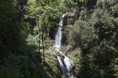 Вилла Gregoriana Parco Стоковые Фото