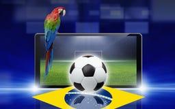 Видеоигра футбола, попугай Бразилии стоковая фотография rf