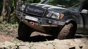 Виллис едет через грязь в древесинах видеоматериал