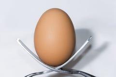2 вилки сбалансированной для того чтобы держать и egg Стоковая Фотография