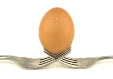 Вилки с яичком на белой предпосылке Стоковое Изображение