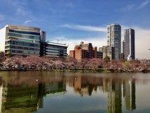 Вид на город в Японии Стоковая Фотография