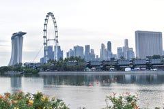 Вид на город Сингапура и колесо Ferris Стоковая Фотография RF