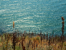 Вид на море ландшафта от скалы Стоковые Изображения