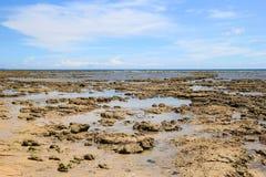 Вид на море во время отлива Стоковые Фотографии RF