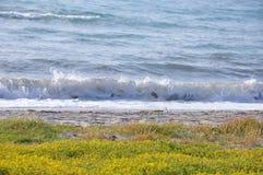 Вид на море с пляжем весной, эгейская зона Турции стоковая фотография