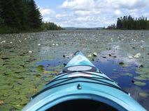 Вид на озеро лилии воды от каяка Стоковые Изображения