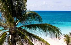Вид на океан Барбадос Стоковые Изображения