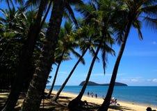 Вид на океан и пальмы стоковые фотографии rf