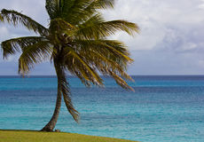 Вид на океан красивых солнечных Барбадос Стоковые Фото