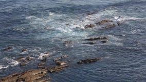 Вид на океан от берега акции видеоматериалы