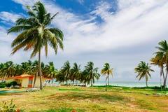 Вид на океан пляжа красивого шикарного ландшафта тропический стоковое изображение rf