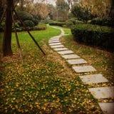 Вид на сад Стоковое фото RF